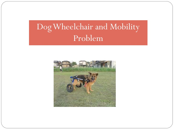 dog wheelchair and mobility problem n.