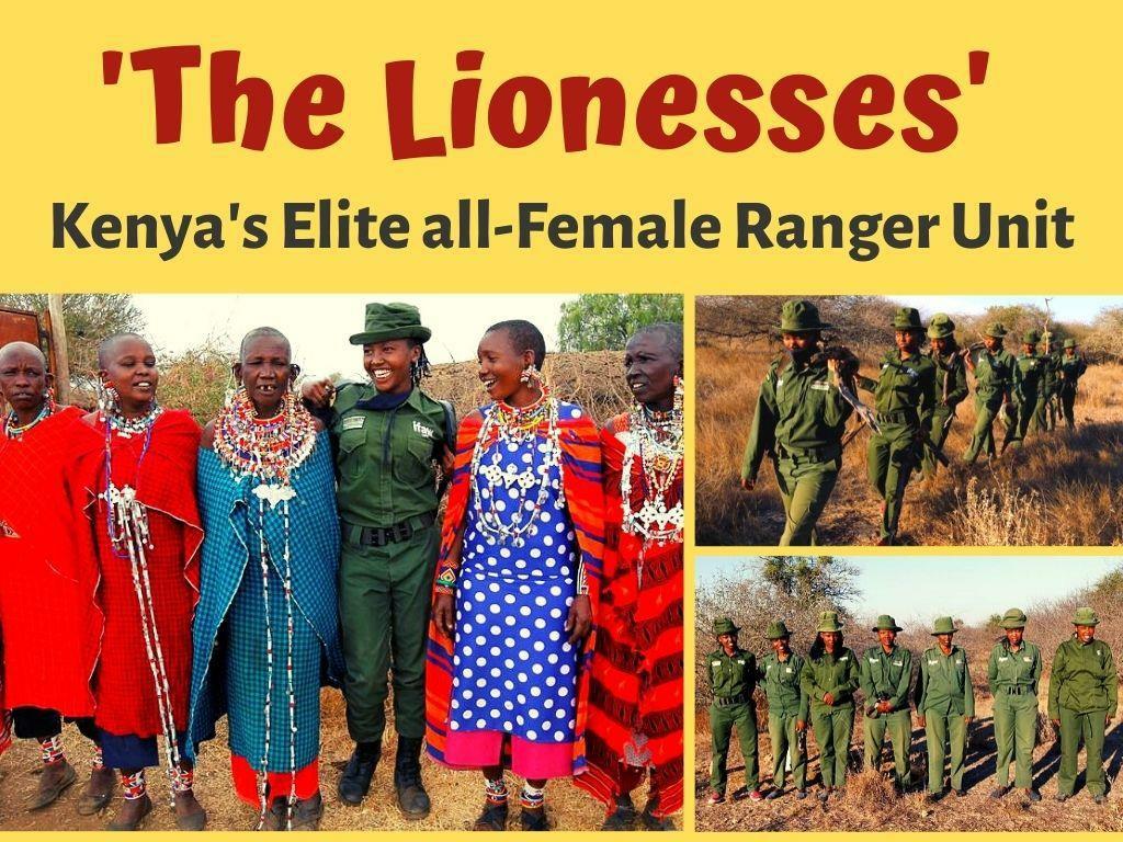 the lionesses kenya s elite all female ranger unit l.