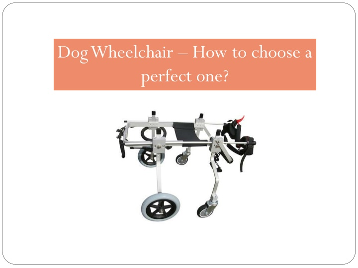 dog wheelchair how to choose a perfect one n.