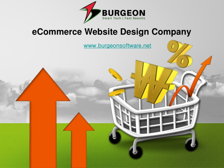 ecommerce website design company n.