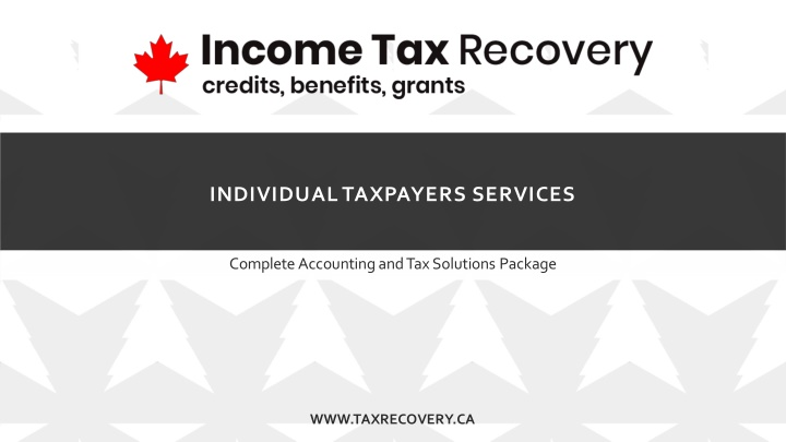 individual taxpayers services n.
