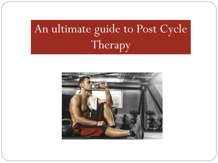 an ultimate guide to post cycle therapy n.
