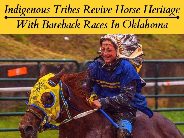 indigenous tribes revive horse heritage with bareback races in oklahoma n.