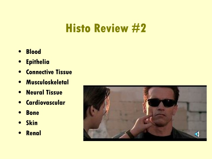 histo review 2 n.