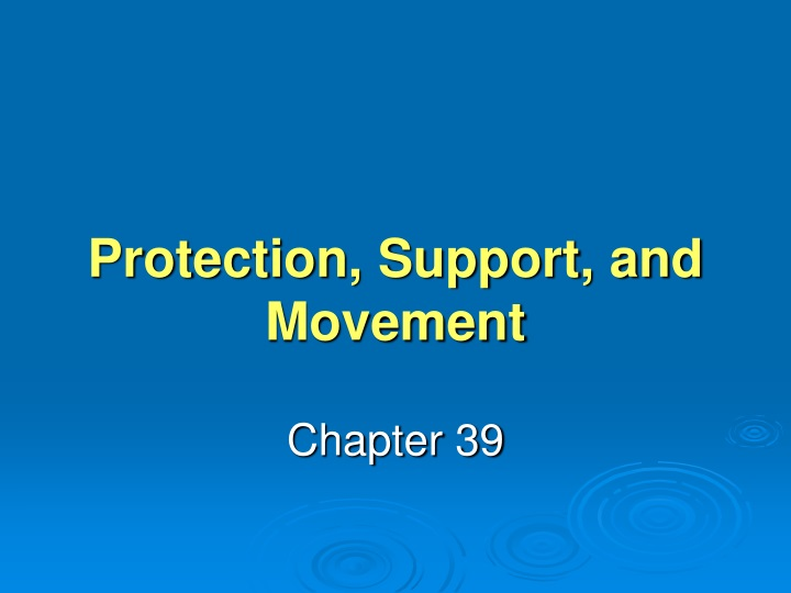 protection support and movement n.