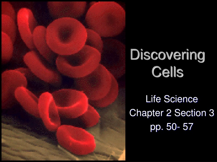 discovering cells n.