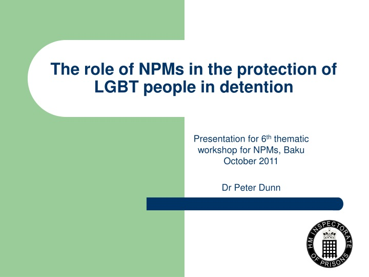 the role of npms in the protection of lgbt people in detention n.