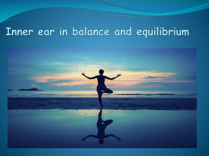 inner ear in balance and equilibrium n.