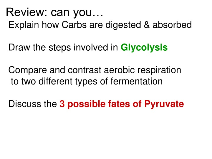 review can you explain how carbs are digested n.