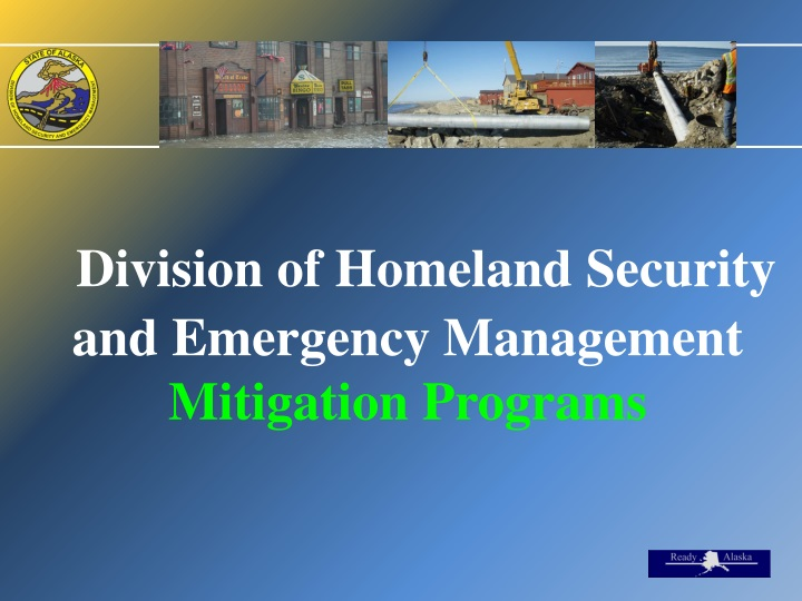 division of homeland security and emergency management mitigation programs n.