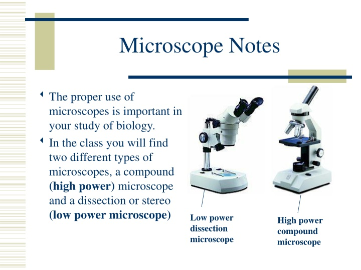 microscope notes n.