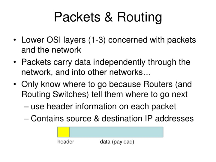 packets routing n.