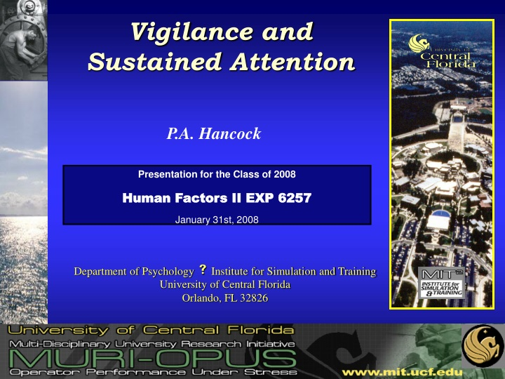 vigilance and sustained attention n.