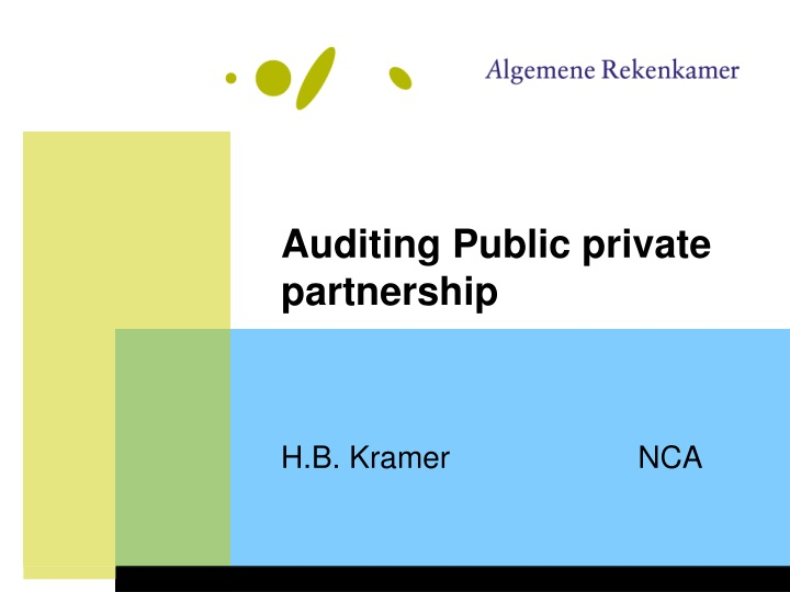 auditing public private partnership n.
