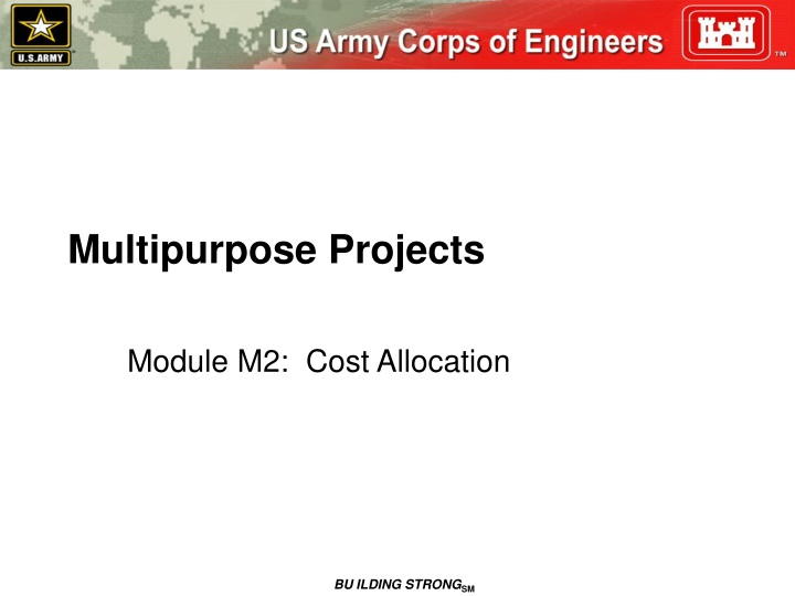 multipurpose projects n.