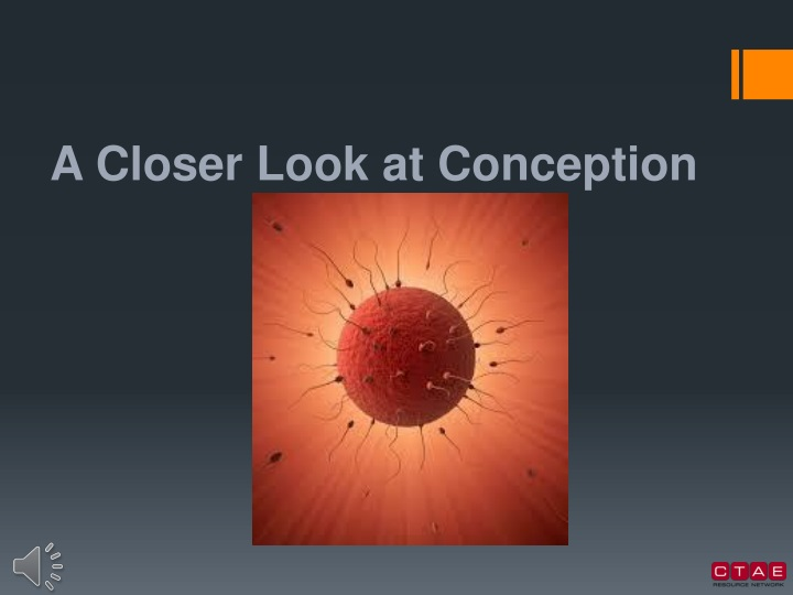 a closer look at conception n.