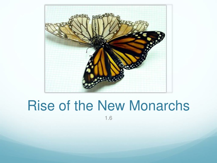 rise of the new monarchs n.