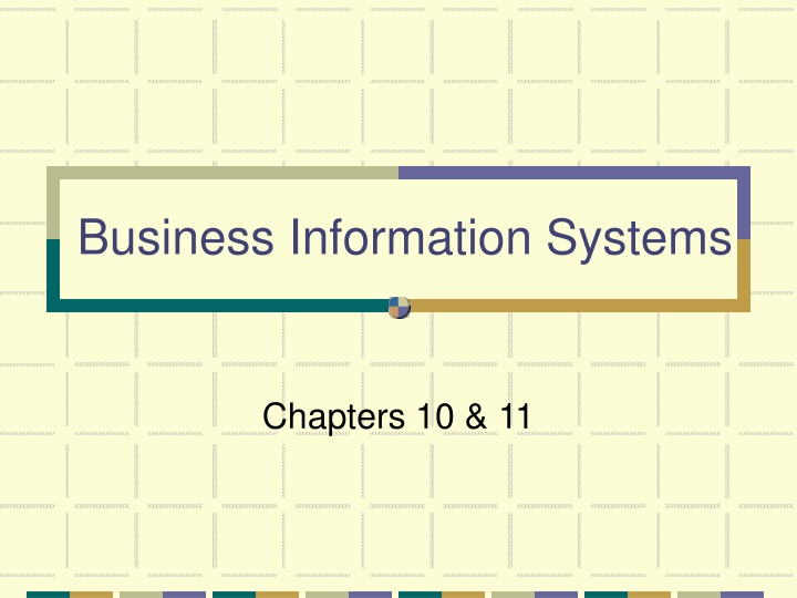 business information systems n.