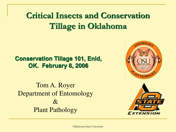 critical insects and conservation tillage in oklahoma n.