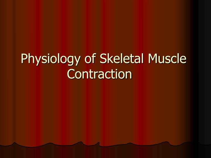 physiology of skeletal muscle contraction n.