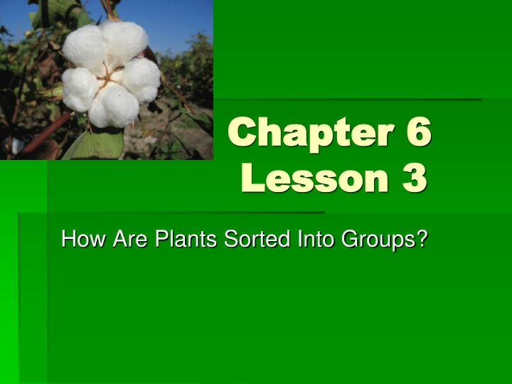 chapter 6 lesson 3 n.