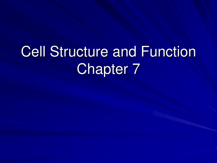 cell structure and function chapter 7 n.