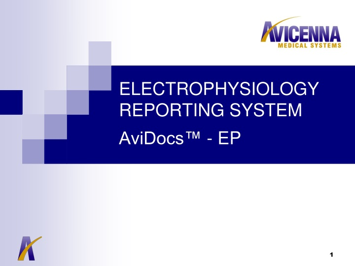 electrophysiology reporting system avidocs ep n.