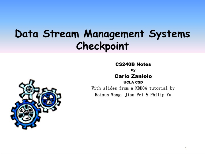 data stream management systems checkpoint n.