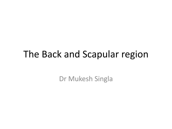 the back and scapular region n.
