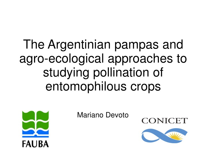 the argentinian pampas and agro ecological n.