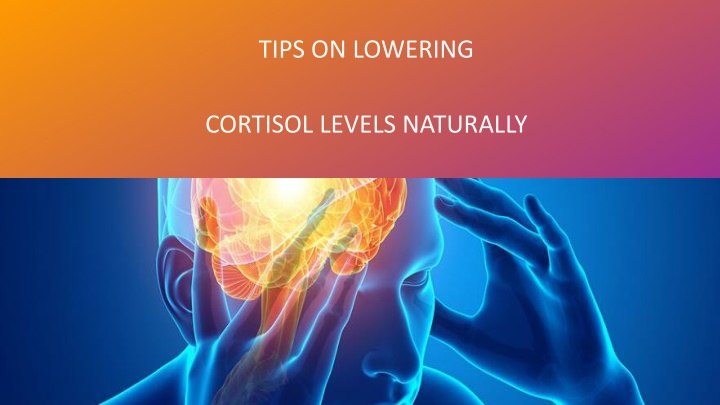 tips on lowering cortisol levels naturally n.