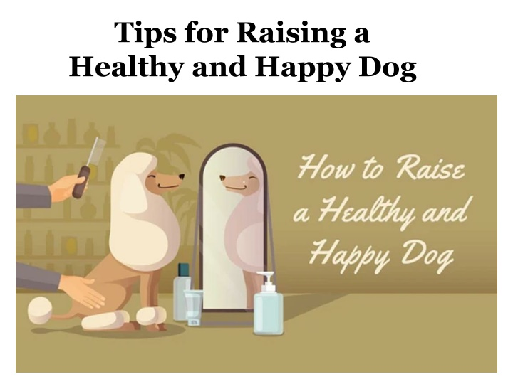 tips for raising a healthy and happy dog n.
