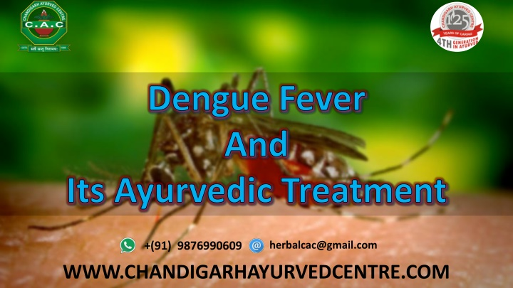 dengue fever and its ayurvedic treatment n.