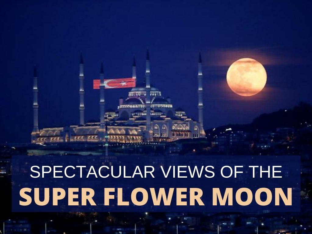 spectacular views of the super flower moon l.