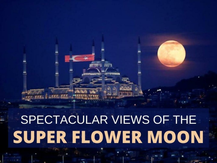spectacular views of the super flower moon n.